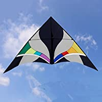 Sky Delta Kite Single Lineアウトドアおもちゃ美しいwithレインボーカラーVery Easy to Fly it , you will be happy it。