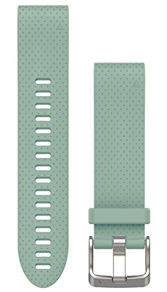 市の中心部花婿堂々たるGARMIN(ガーミン) QuickFit 20mm  fenix5s/5Splus用交換ベルト Greyed Jade グレイッシュグリーン 010-12491-29