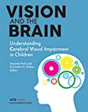 Vision and the Brain: Understanding Cerebral Visual Impairment in Children (English Edition) 画像