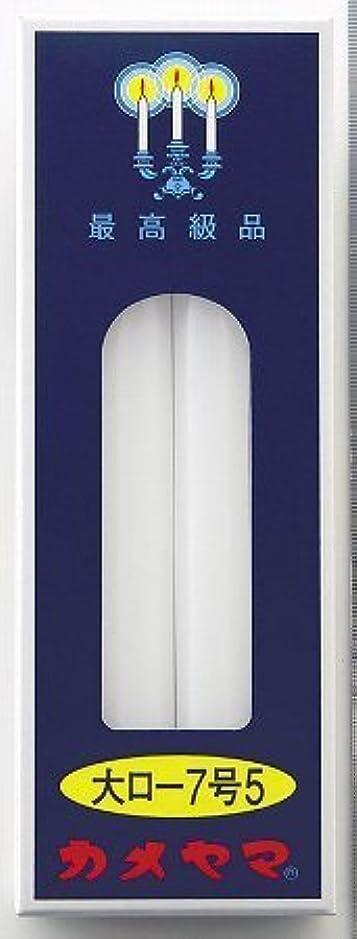 舌ハプニング半導体カメヤマ 大ローソク 7号5 225g