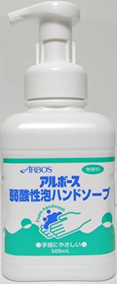 累計苛性思春期のアルボース弱酸性泡ハンドソープ