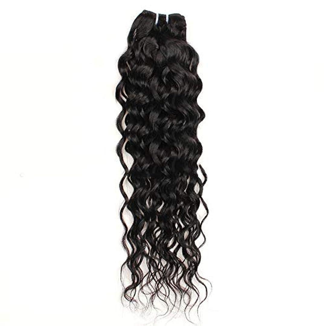 締め切りジャンプする許さないWASAIO ブラジルレアル人間の髪ウォーター織り閉鎖ボディウェーブ拡張リアルな鮮やかさ100グラム/バンドル10インチ、26インチ (色 : 黒, サイズ : 12 inch)
