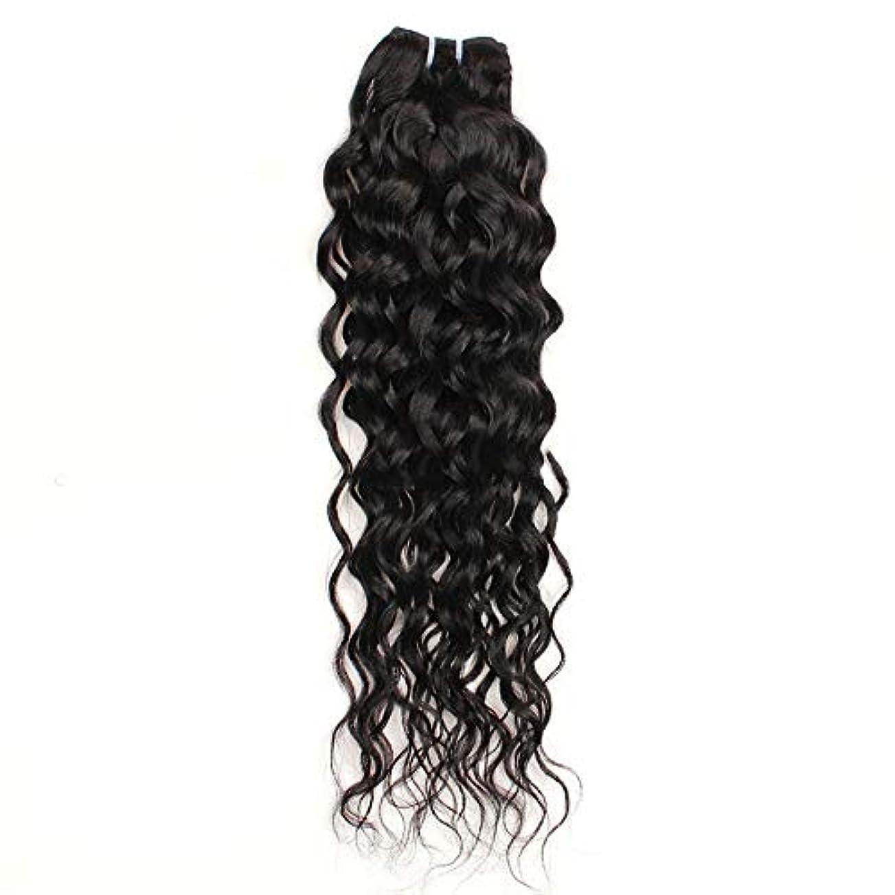 半円一月年金受給者YESONEEP 10インチ-26インチブラジルリアル人間の髪の毛7Aウォーターウェーブヘアエクステンションナチュラルカラー100g /バンドル合成ヘアレースかつらロールプレイングかつら長くて短い女性自然 (色 : 黒,...