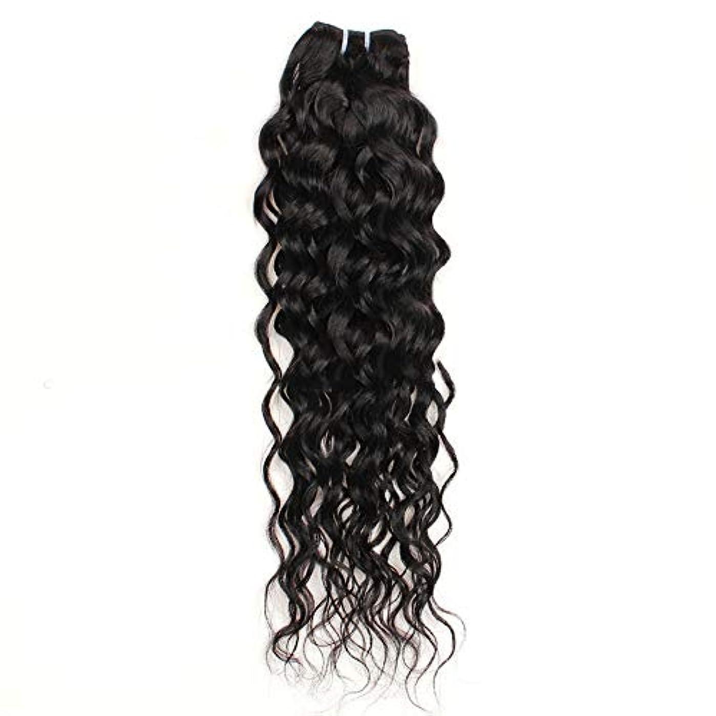 ソーダ水シード驚いたことにHOHYLLYA 10インチ-26インチブラジルリアル人間の髪の毛7Aウォーターウェーブヘアエクステンションナチュラルカラー100g /バンドル合成ヘアレースかつらロールプレイングかつら長くて短い女性自然 (色 : 黒,...