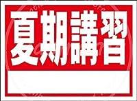 「夏期講習 」 金属板ブリキ看板注意サイン情報サイン金属安全サイン警告サイン表示パネル