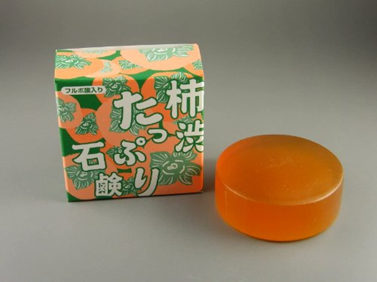 ほこり衰えるオープナー柿渋たっぷり石鹸 100g(フルボ酸入り)