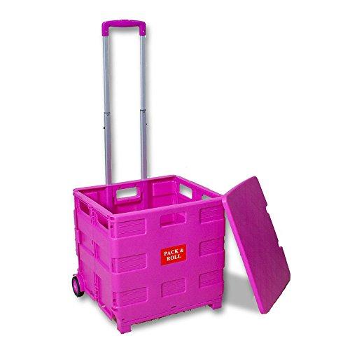 オウルテック 折りたたみ式 キャリーカート 台車 フタ付 軽量 コンパクトサイズ ピンク