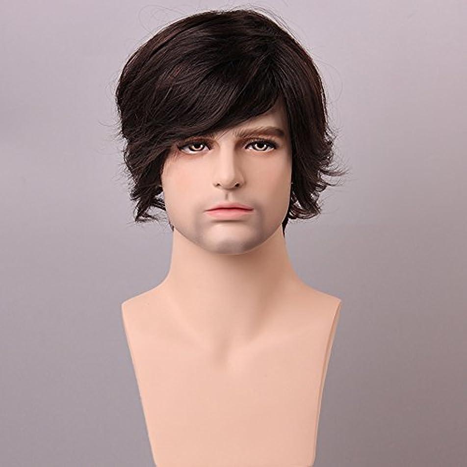 列挙する凍ったスラックYZUEYT ふわふわミディアムブラウン男性の人間の髪のかつら男性モノトップVirginレミーキャップレスサイドバング YZUEYT (Size : One size)