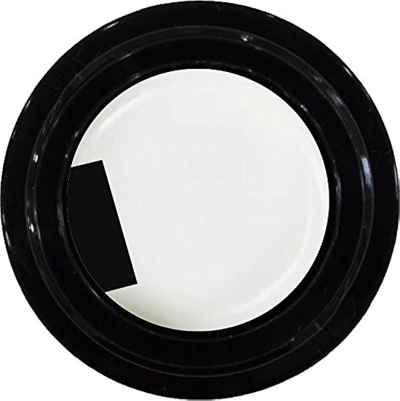 全国多分畝間カラージェル enchant color gel M001 PureWhite 3g/ マット M001 ピュアホワイト 3グラム アレルギー対応