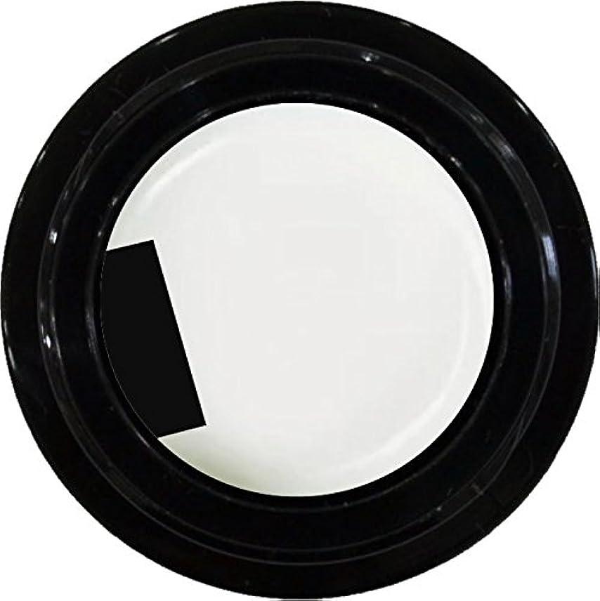 溶けた衝撃例示するカラージェル enchant color gel M001 PureWhite 3g/ マット M001 ピュアホワイト 3グラム アレルギー対応