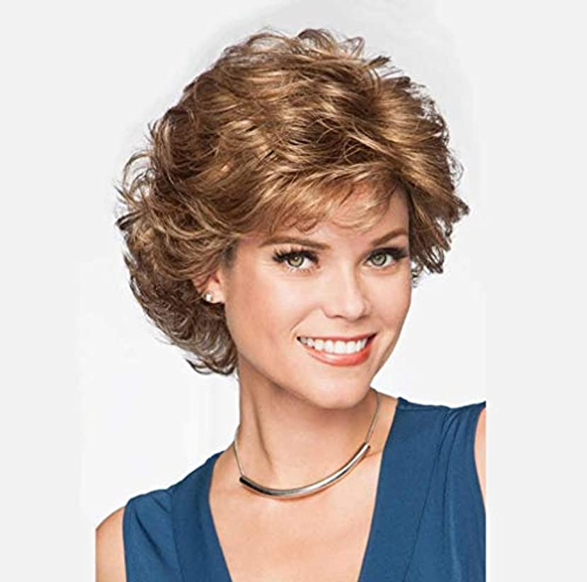 道徳の用心深いマニフェスト女性かつら耐熱合成繊維短い人間の髪かつらカールブラジルバージン人間の髪短いかつら150%密度28センチ