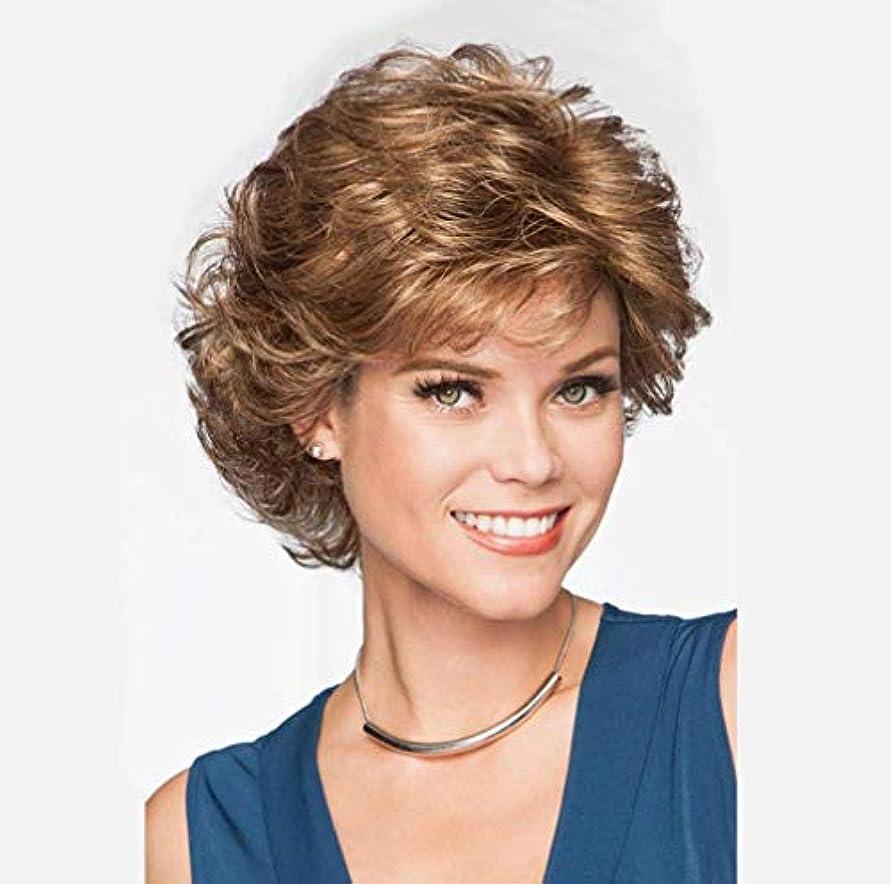ヒューマニスティック貫通する東方女性かつら耐熱合成繊維短い人間の髪かつらカールブラジルバージン人間の髪短いかつら150%密度28センチ