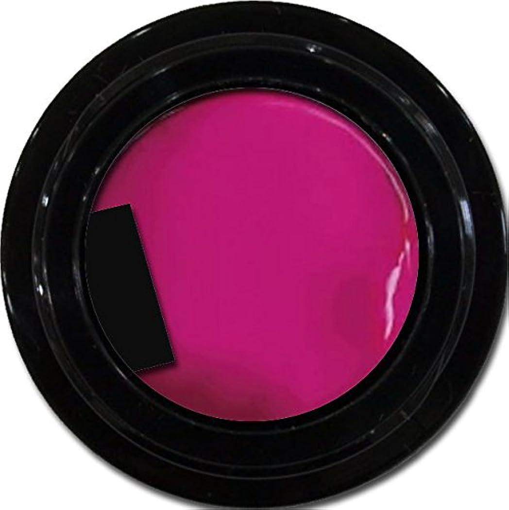 恥ずかしさずらす除外するカラージェル enchant color gel M214 NeoPink 3g/ マットカラージェル M214 ネオピンク 3グラム
