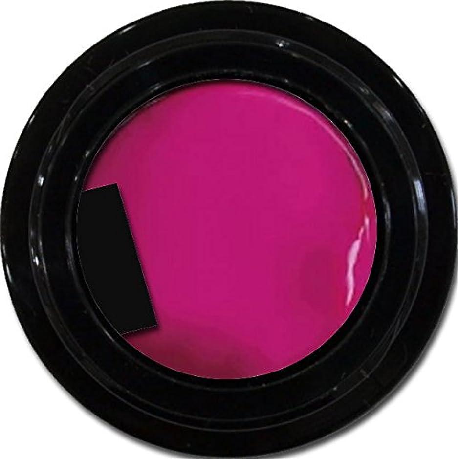 何故なのしないでください警察署カラージェル enchant color gel M214 NeoPink 3g/ マットカラージェル M214 ネオピンク 3グラム