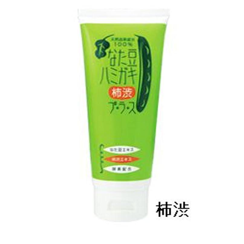 コミュニケーションお手入れ磁気なた豆ハミガキ 2本組【柿渋】