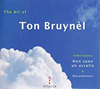 Art of Ton Bruynel [DVD] [Import]