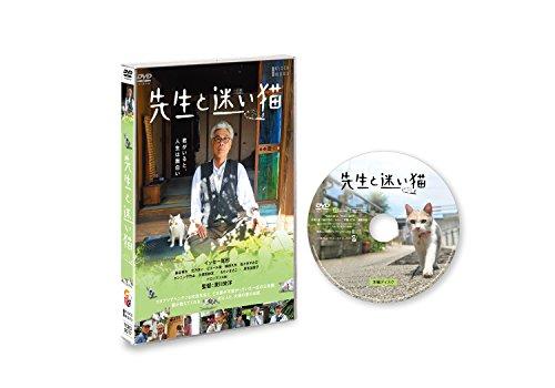 先生と迷い猫 通常版 [DVD]の詳細を見る