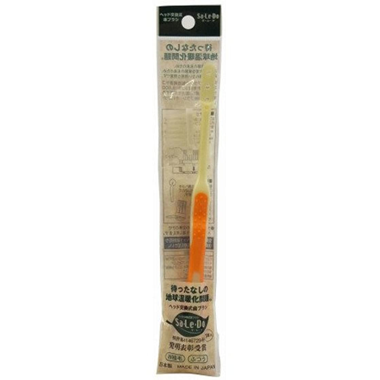 ラインナップ衝突する電話サレド ヘッド交換式歯ブラシ お試しセット レギュラーヘッド オレンジ