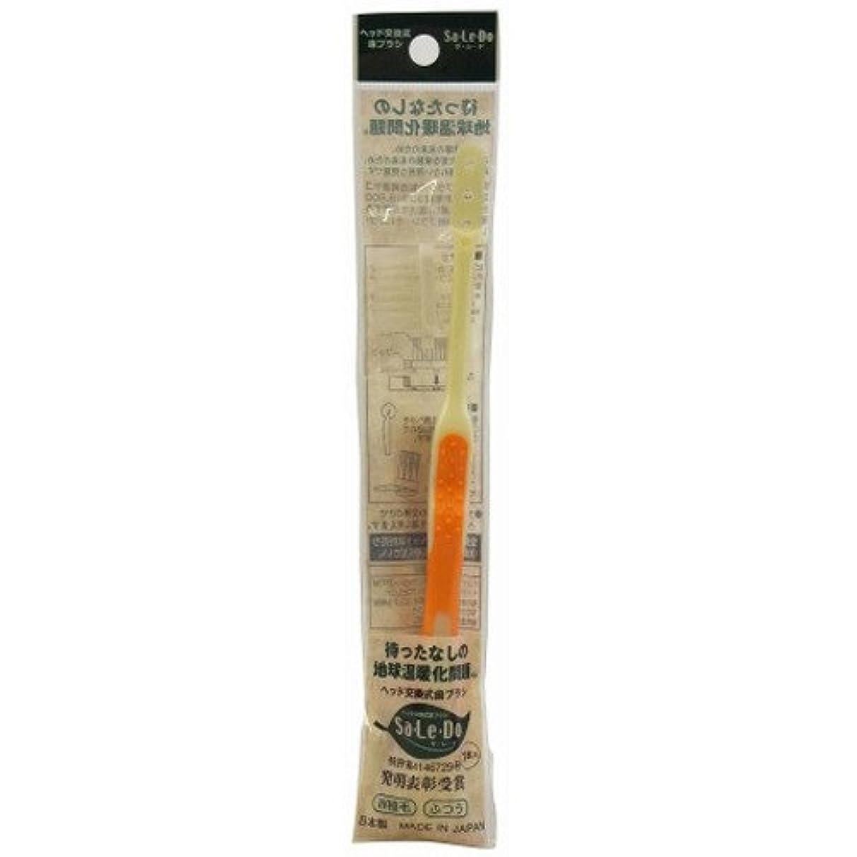 包帯蒸発問い合わせサレド ヘッド交換式歯ブラシ お試しセット レギュラーヘッド オレンジ