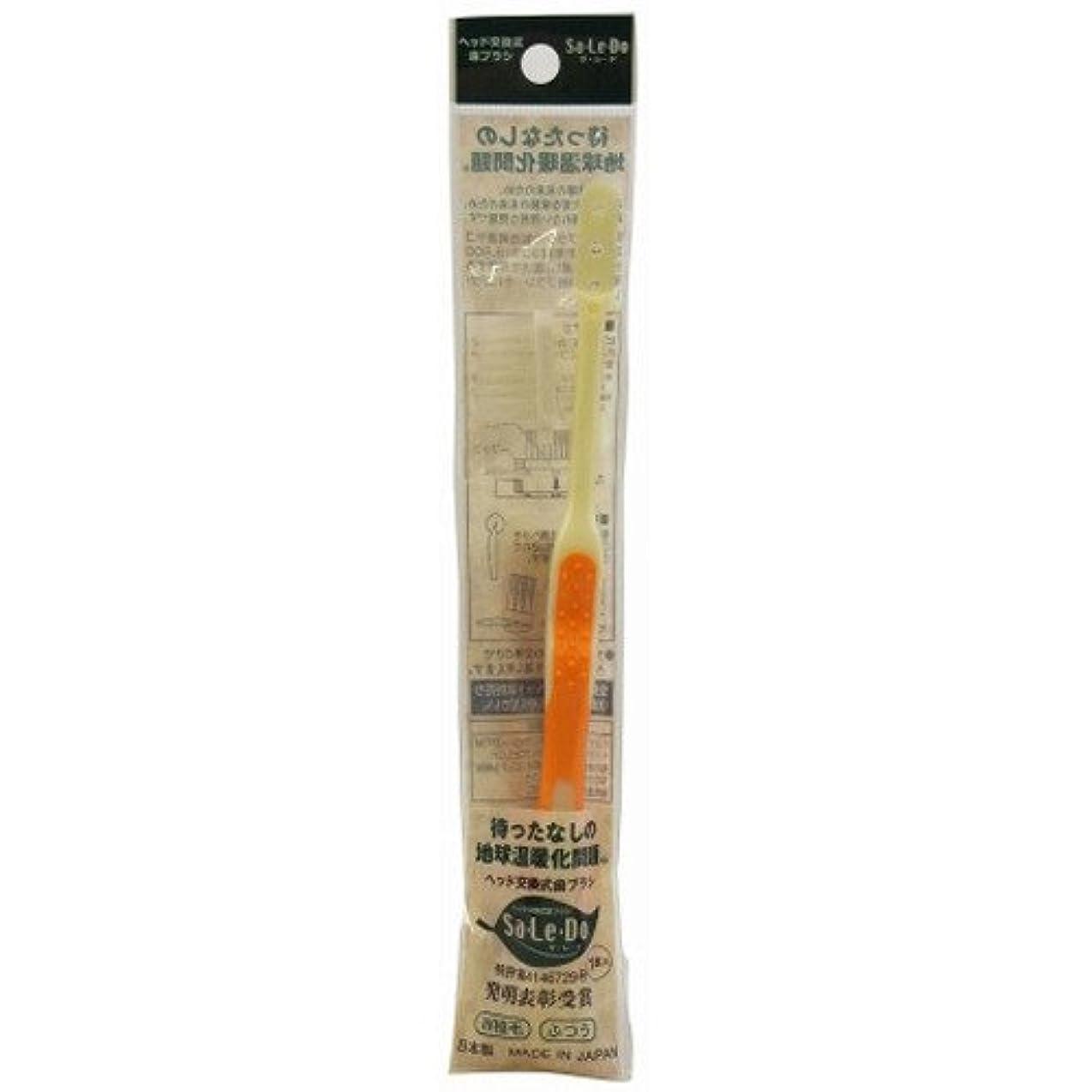 乱用二層バズサレド ヘッド交換式歯ブラシ お試しセット レギュラーヘッド オレンジ