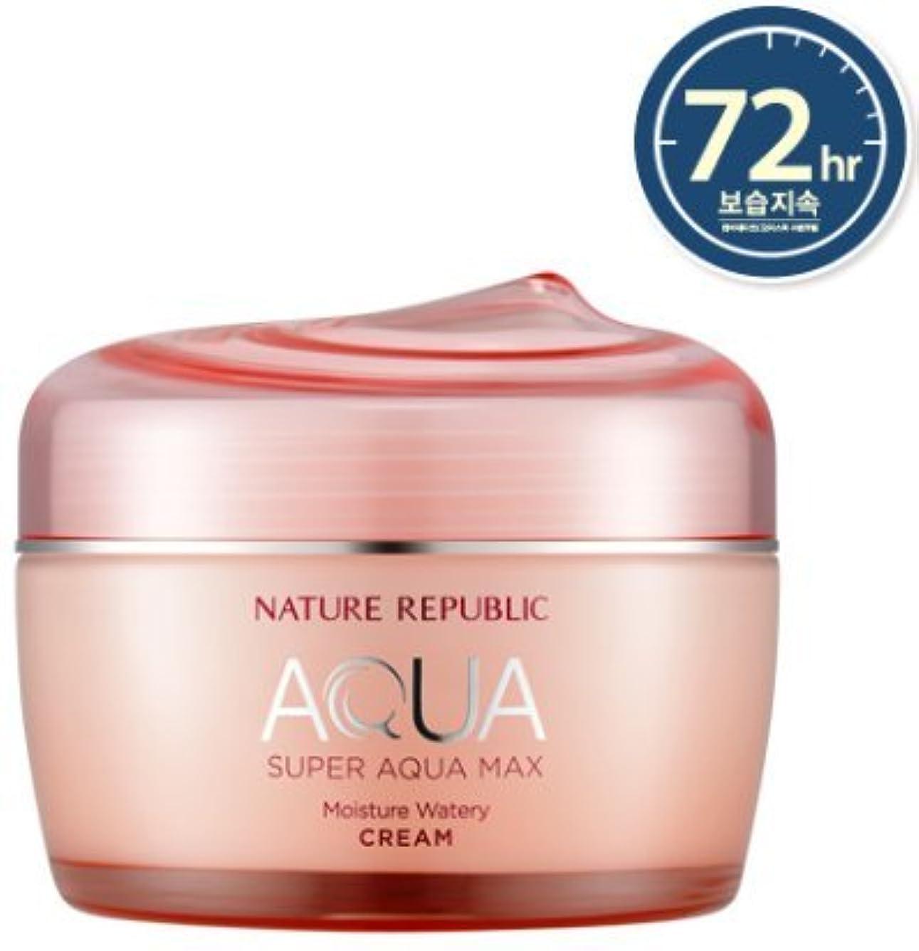 弱まる中央値眉[NATURE REPUBLIC] スーパーアクアマックスモイスチャー水分クリーム / Super Aqua Max Moisture Watery Cream 80ml (乾燥肌用) [並行輸入品]