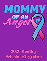 Mommy Of An Angel 2020 Monthly Organizer Planner: 90 page 2020 monthly calendar for mothers dealing with baby loss with goals to do list and notes