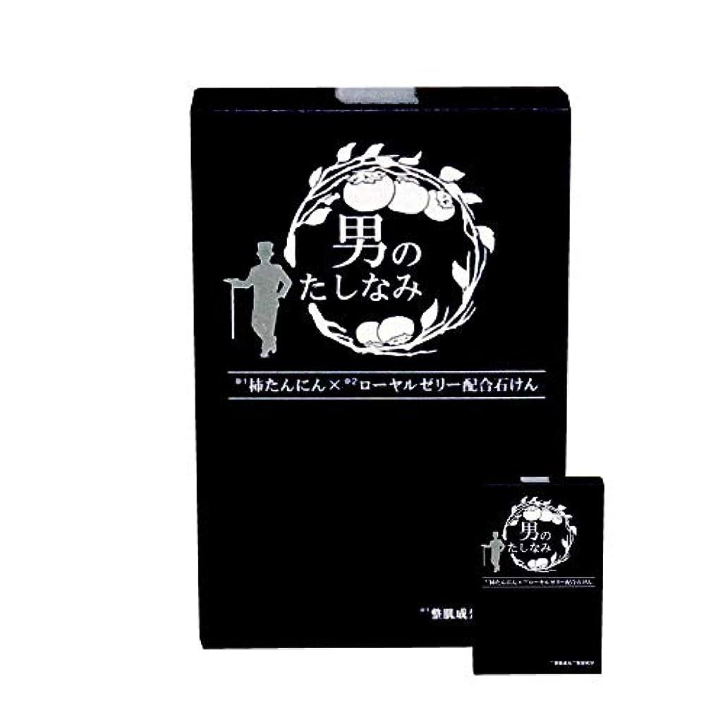 用量恐竜メタルライン柿渋石鹸 男のたしなみ 100g (2個セット)
