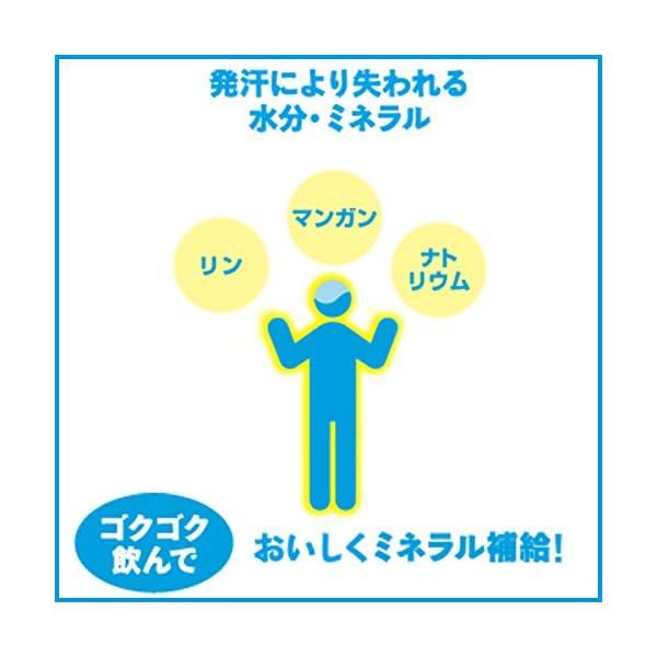 伊藤園 健康ミネラルむぎ茶の紹介画像16