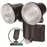 探知方式 赤外線センサー 太陽光 ソーラーパネル センサー 照明 【LED】ソーラー式 1W LED×2 センサーライト