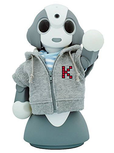 ー学んで答える、小さなロボット。ー Kibiro(キビロ) 本体オリジナル版(パーカー&Tシャツ)サービス利用料12ヶ月セット