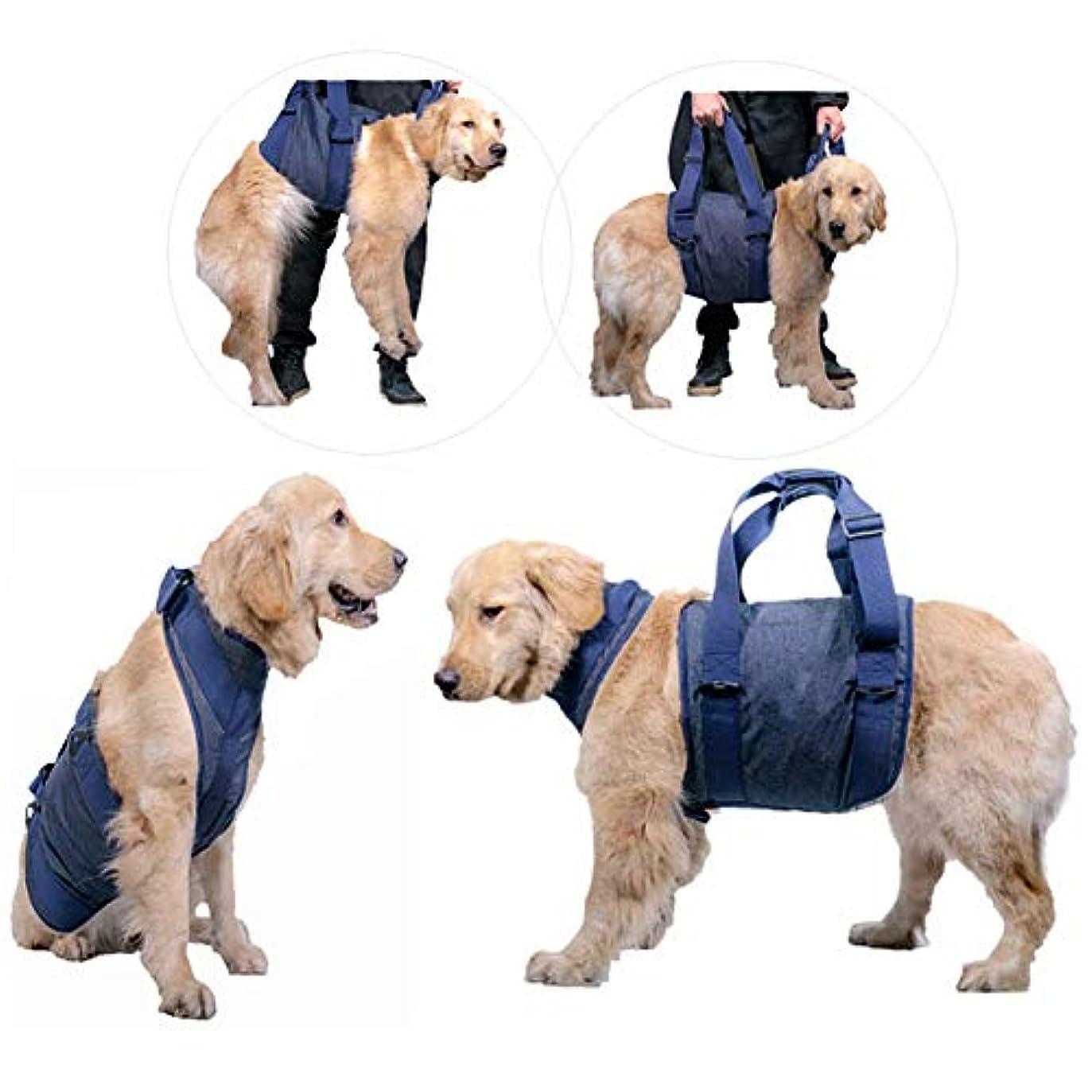 ラッチジョリー現代犬のリフティングハーネス、犬の前部後肢に苦しんでいる補助ベルトリハビリテーションベスト運動性関節炎手術高齢犬XTM075,S