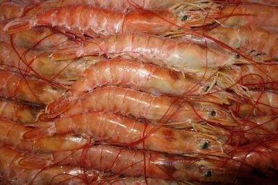 アルゼンチン赤えび 20/30 サイズ 2kg 【冷凍】/ARBUMASA(2箱)