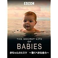 赤ちゃんのヒミツ~驚くべき生命力~ (吹替版)