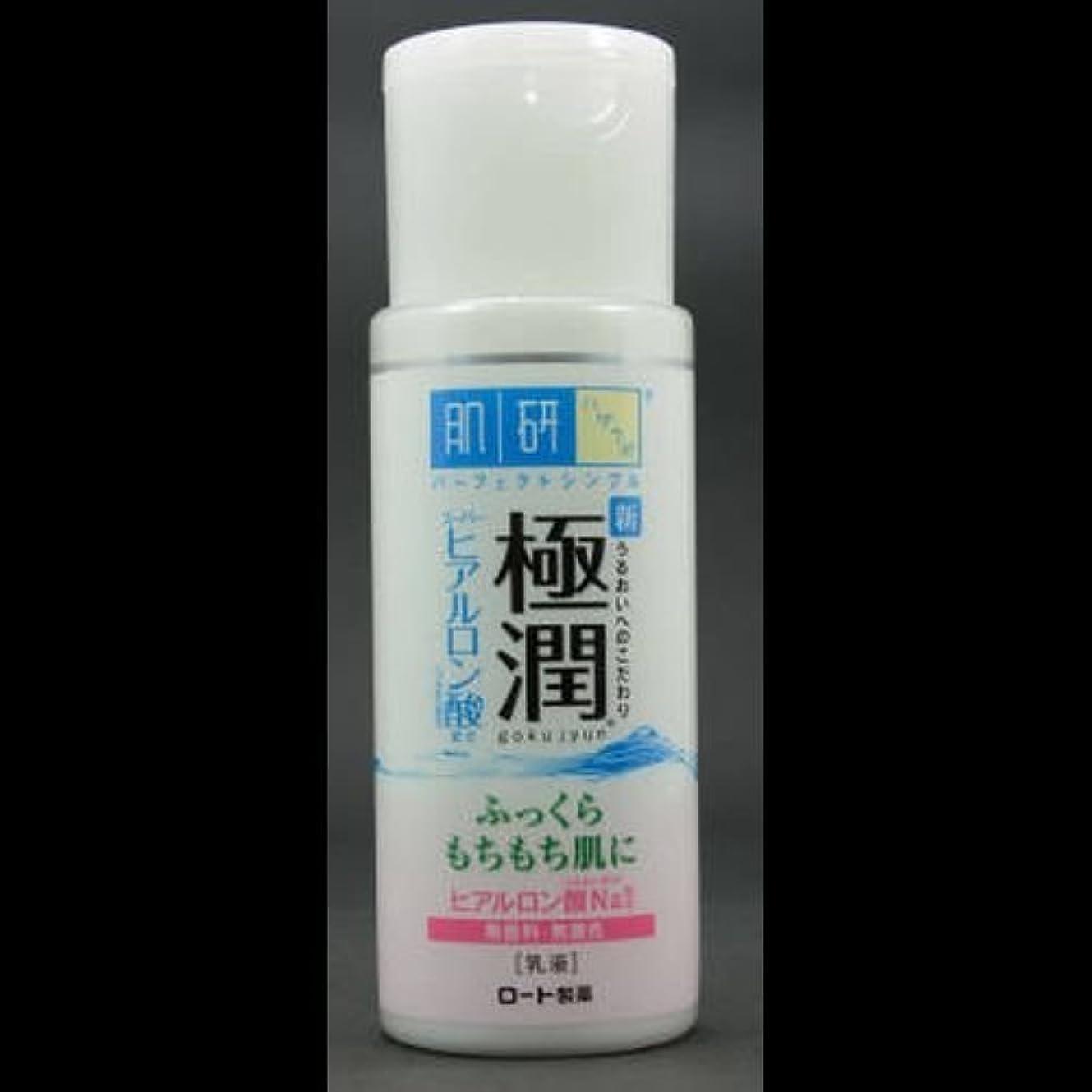 堂々たる販売計画め言葉【まとめ買い】肌研 極潤 ヒアルロン乳液 140mL ×2セット