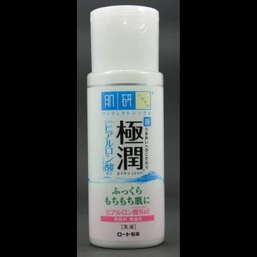 床を掃除するモルヒネみ【まとめ買い】肌研 極潤 ヒアルロン乳液 140mL ×2セット