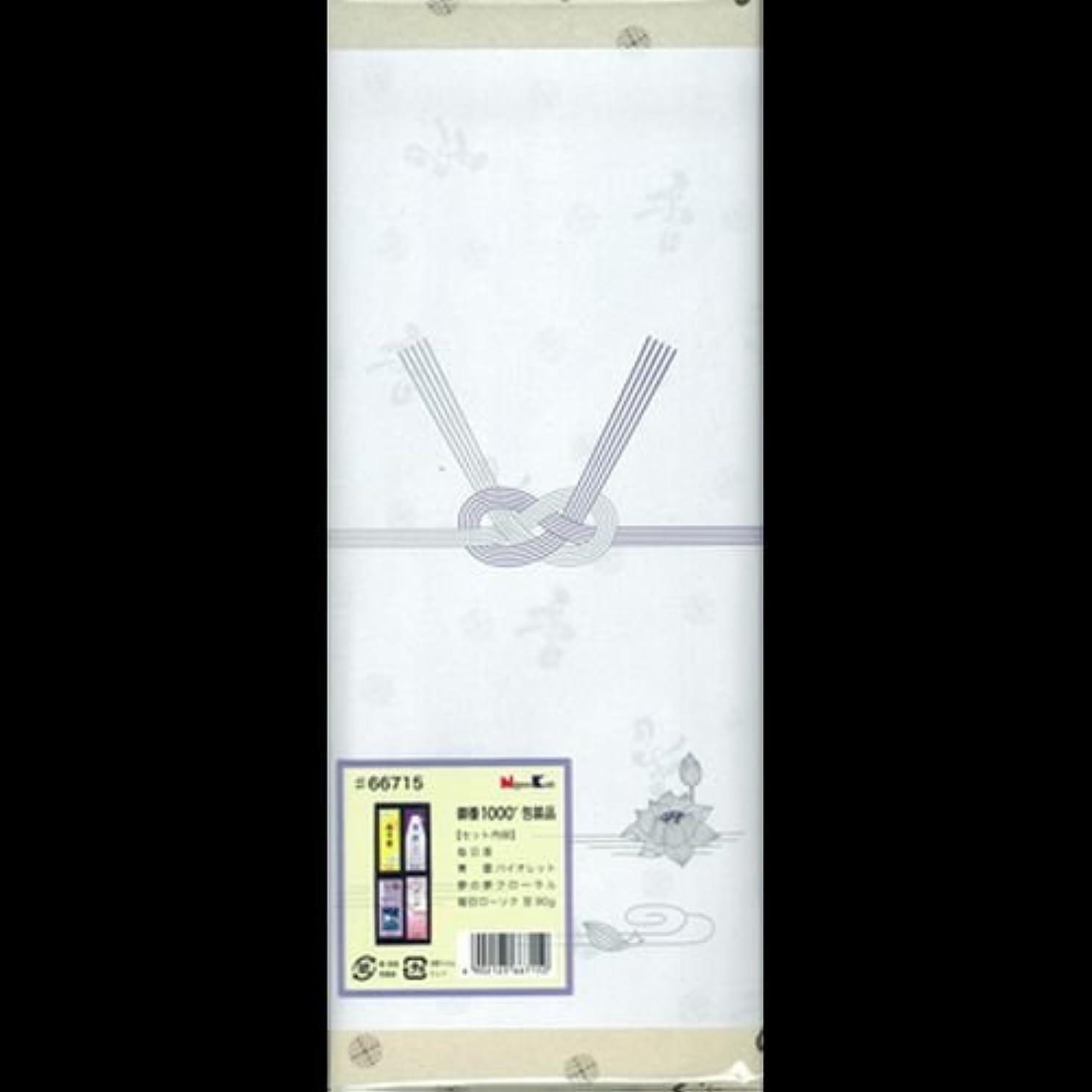 肥満宴会署名【まとめ買い】御香セット1000 包装品 66715 ×2セット