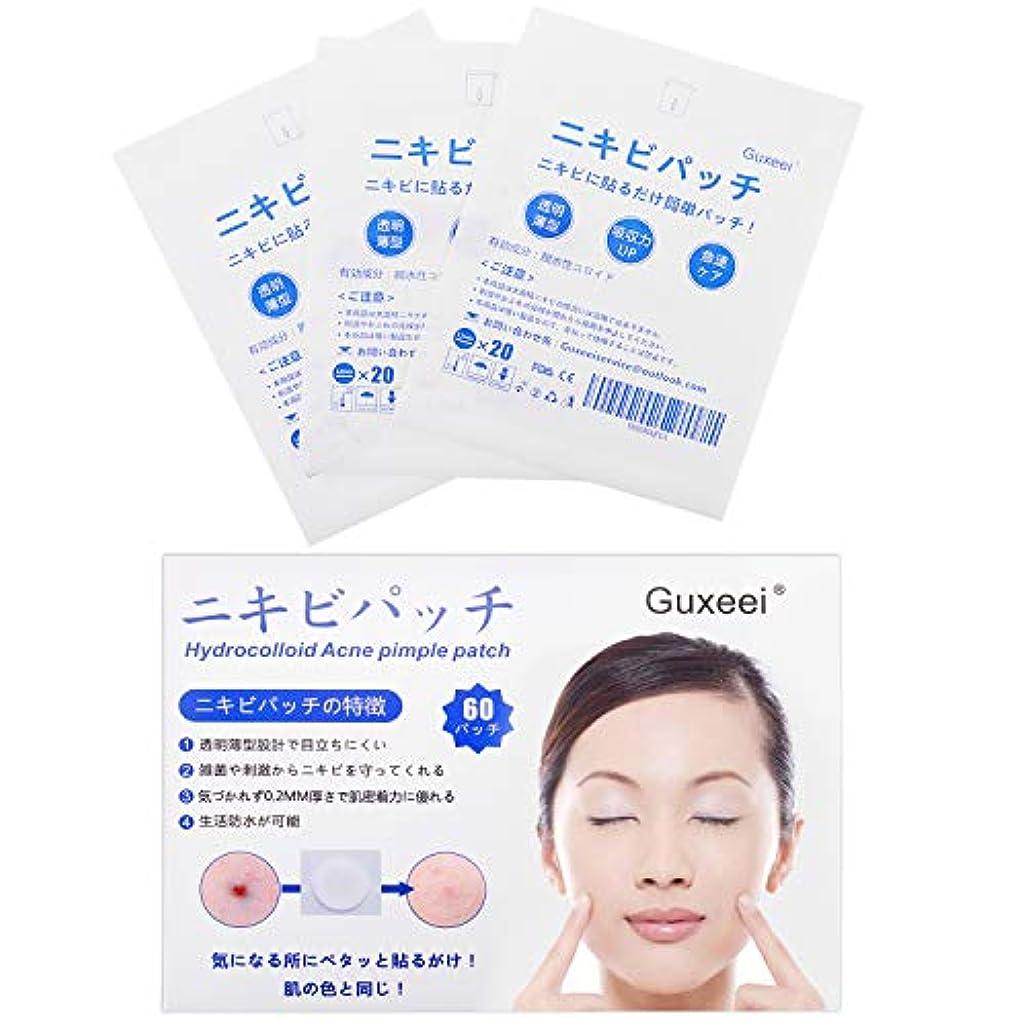 留め金些細なひどいGuxeei スポット ニキビ コンシーラー Acne Pimple Patch 12mm(3枚 60パッチ入り )