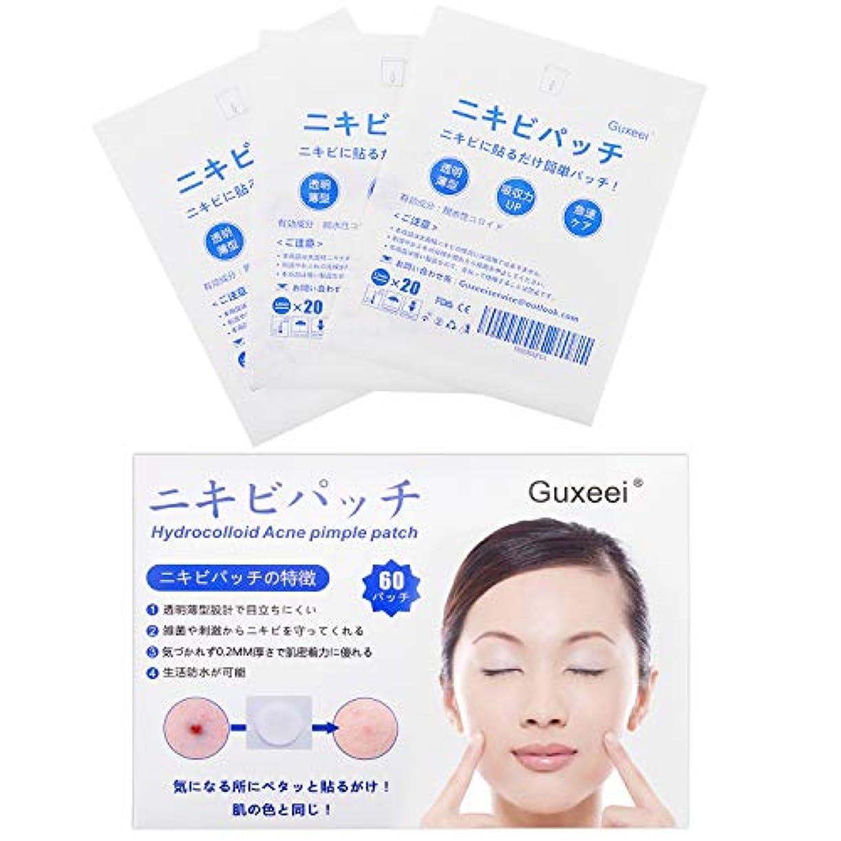 下品ヒューマニスティックお願いしますGuxeei スポット ニキビ コンシーラー Acne Pimple Patch 12mm(3枚 60パッチ入り )