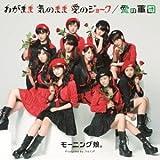 わがまま 気のまま 愛のジョーク/愛の軍団(B) [Single, Maxi] / モーニング娘。 (演奏) (CD - 2013)