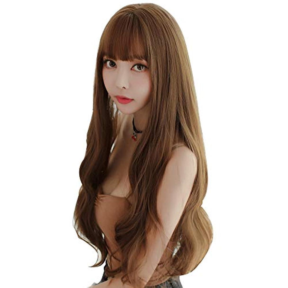 抽象化突き刺すレディSRY-Wigファッション ウィッグロングヘアファッションブラウン高密度温度合成ウィッグ女性シームレスウェーブロールプレイングヘアウィッグ