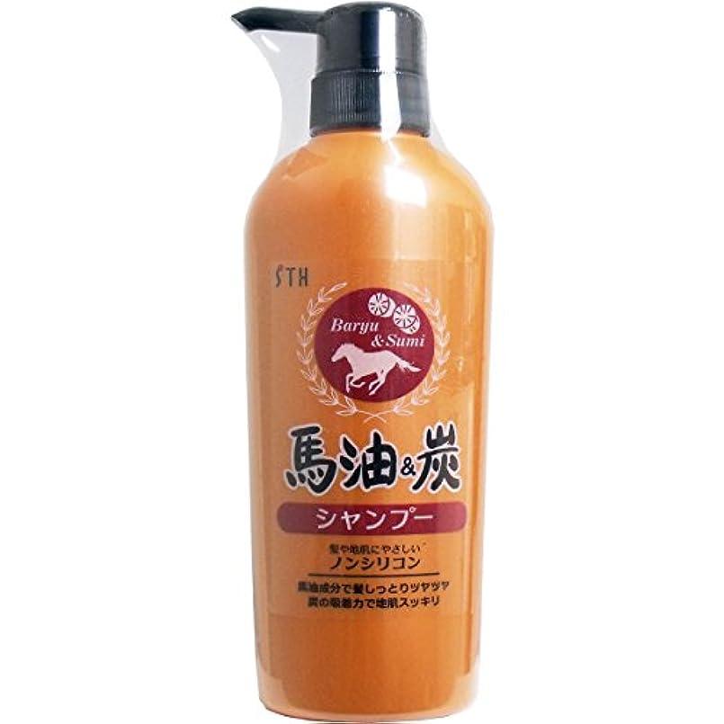 達成可能ピーク求人お風呂 美髪 心満たすリラックスアロマの香り 人気の 馬油&炭 ノンシリコン シャンプー 400mL【2個セット】