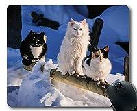 ゲーミングマウスマット、雪の冬の動物かわいい猫のマウスパッド、コンピュータcat222のマウスマット