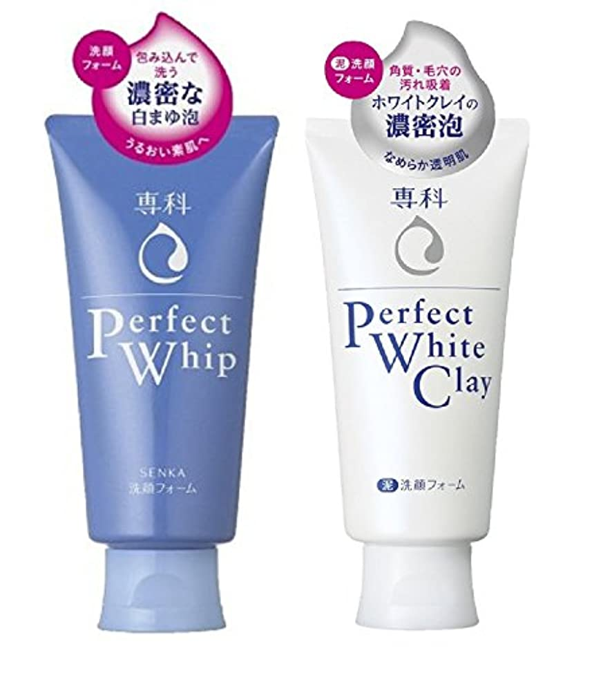 イル屋内で小売朝晩洗顔フォーム専科セット品 パーフェクトホイップn + パーフェクト ホワイトクレイ 120gx2