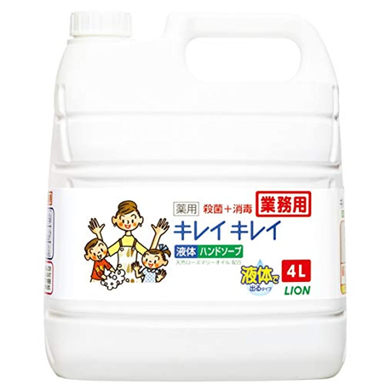 代理店アニメーションなくなる【業務用 大容量】キレイキレイ 薬用 ハンドソープ  4L(医薬部外品)