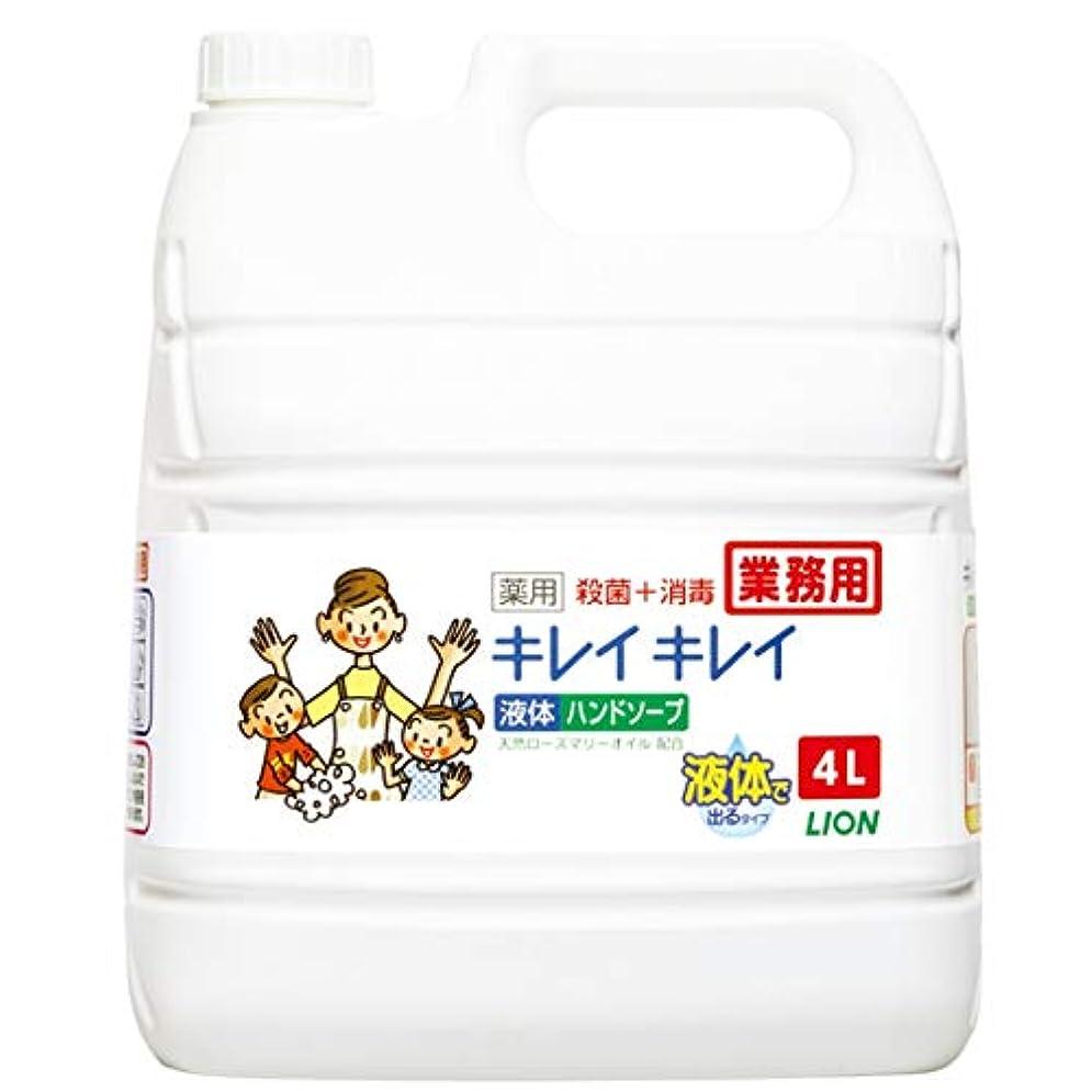 論文民兵観客【業務用 大容量】キレイキレイ 薬用 ハンドソープ  4L(医薬部外品)