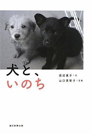 犬と、いのち