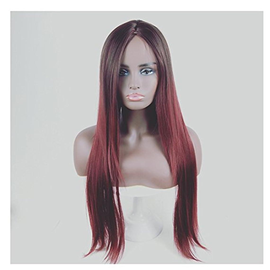 退却微生物短命JIANFU 合成 長い ストレート ヘア カラー グラデーション フル ウィッグ女性 ロングバンズ 耐熱 コスプレ/パーティー (Color : Black Gradient Wine Red)
