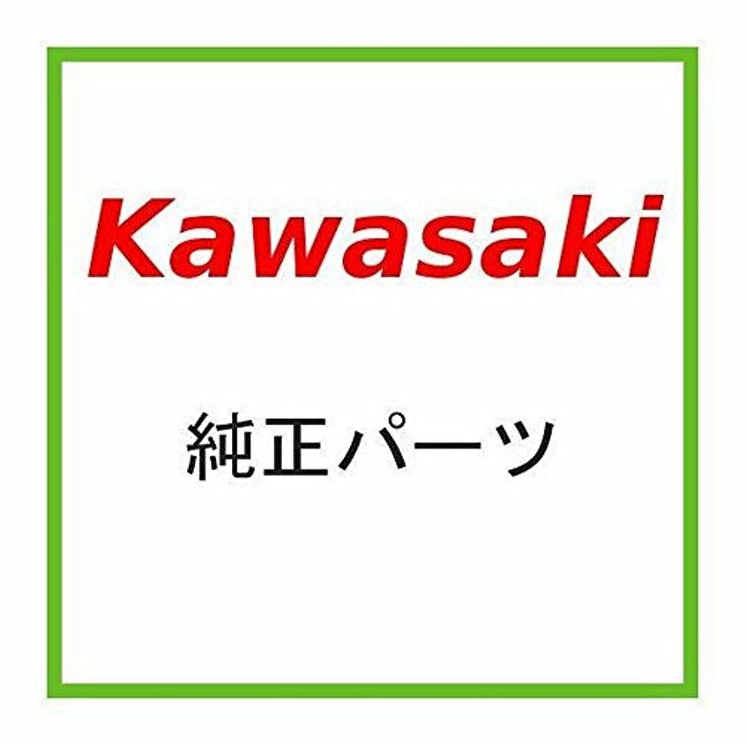 複雑でないピグマリオン近代化するKAWASAKI (カワサキ) 純正部品 ハウジングアッシ(コントロール),LH 46091-1661
