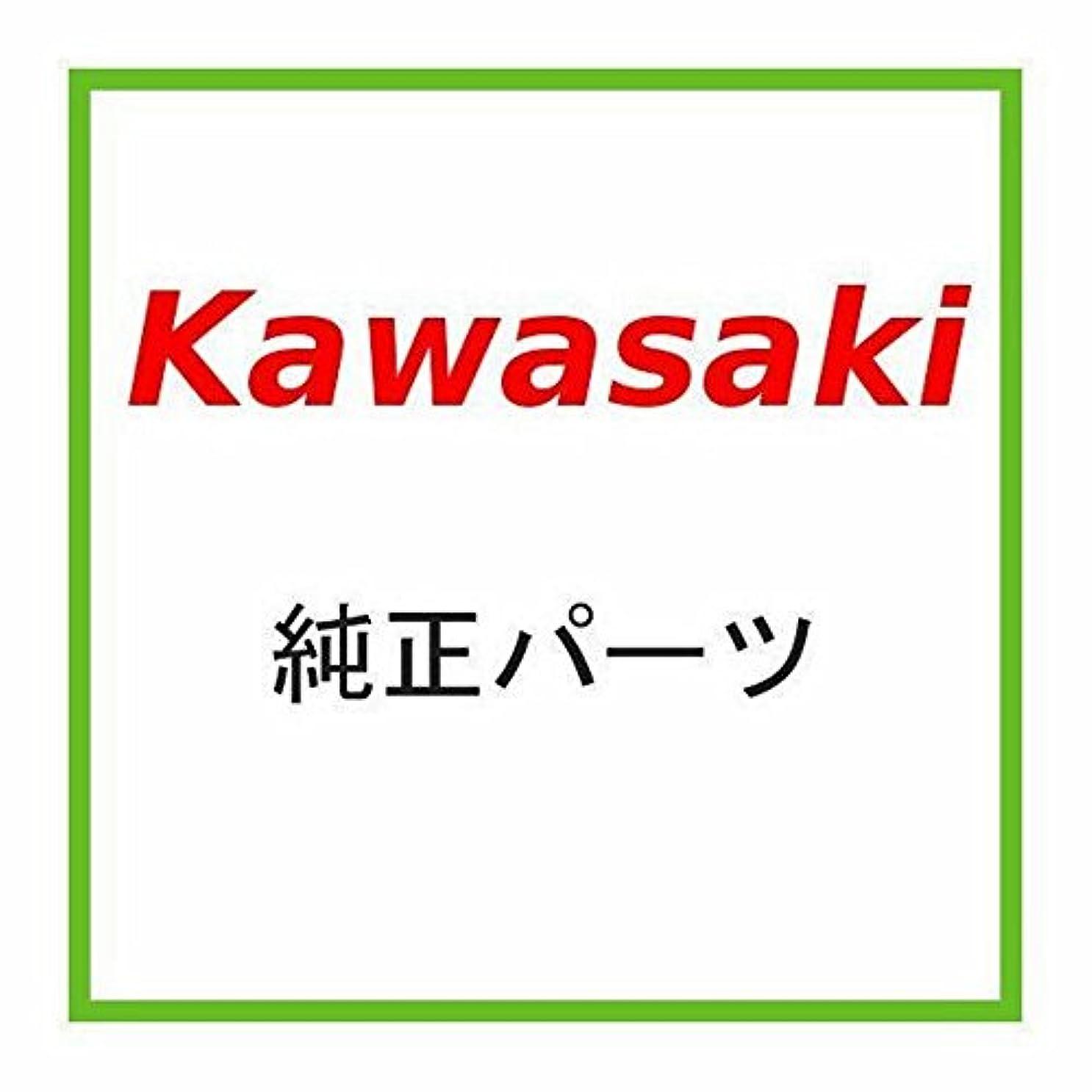 単にプログラムモンクKAWASAKI (カワサキ) 純正部品 ダクト,インテイク 14073-0264
