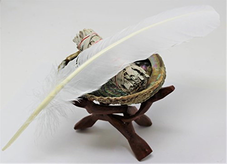 祖母氷矢レインボーレコードAbalone Shell、6